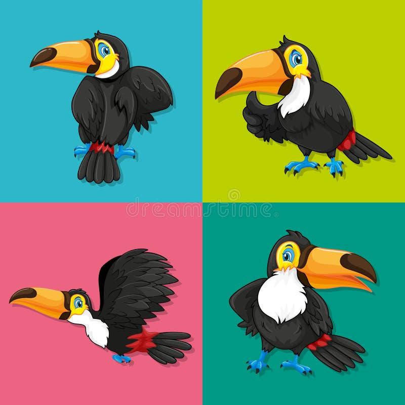 Toucan dans quatre cadres illustration libre de droits