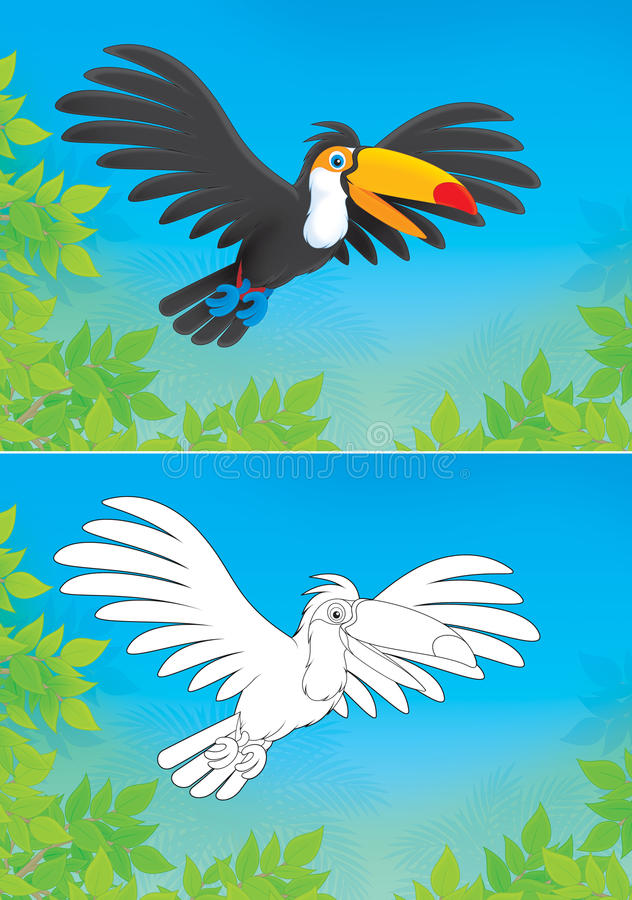 Download Toucan stock illustration. Image of drawing, rainforest - 31171060