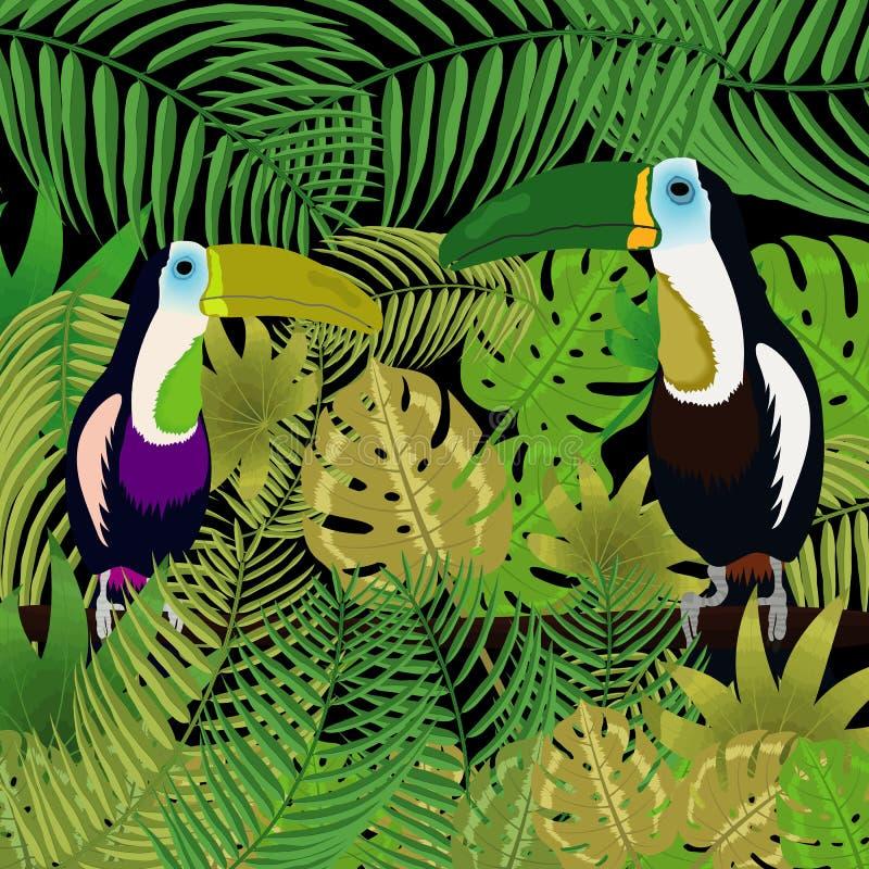 Toucan nella giungla fotografia stock