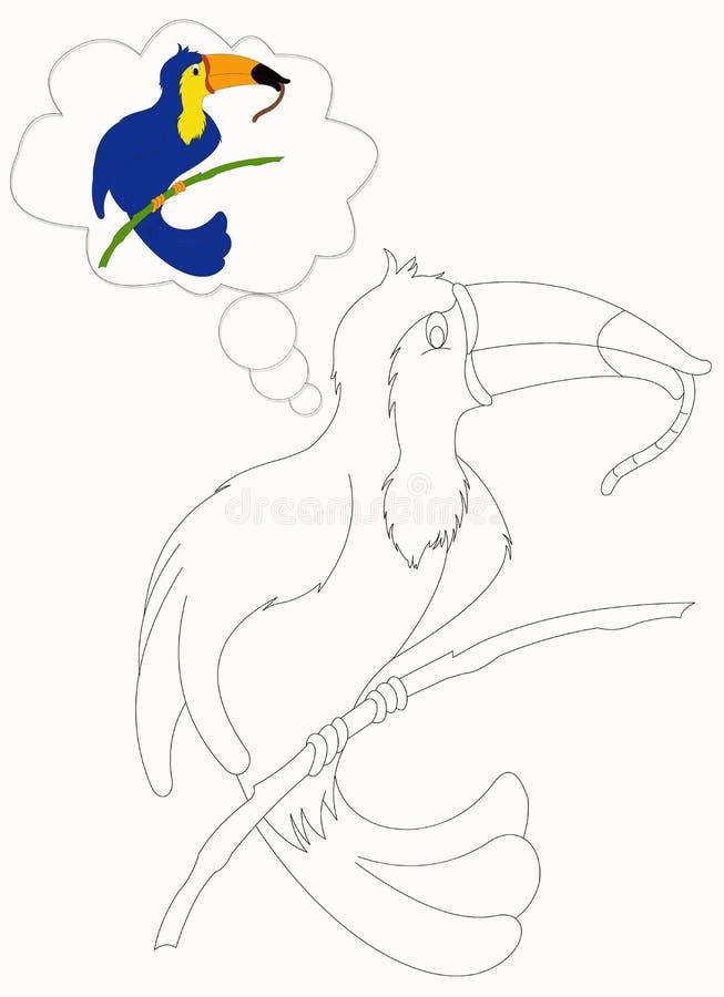 Toucan som färgar 3 stock illustrationer