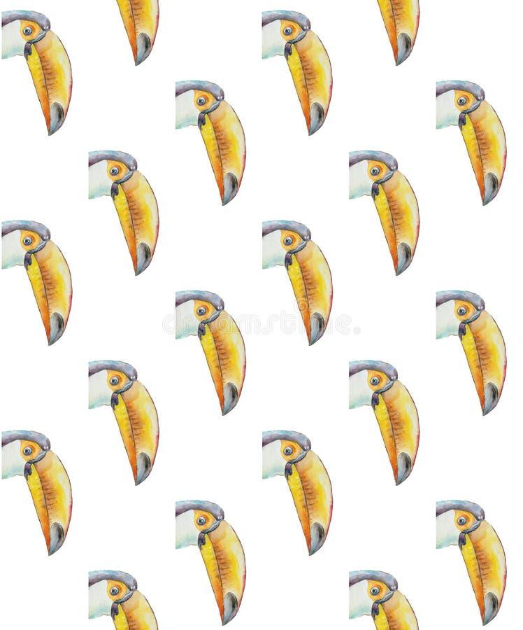 toucans画象的样式与大额嘴的 皇族释放例证