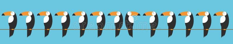 Toucans集合象 toucan传染媒介象的动画片例证网的 动物关于行为的变化的概念用一个讽刺方式 向量例证