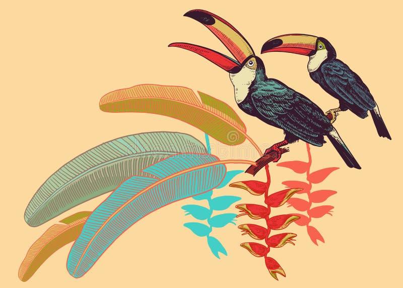 Toucans птиц, тропические листья и цветки Шаблон для печати o бесплатная иллюстрация