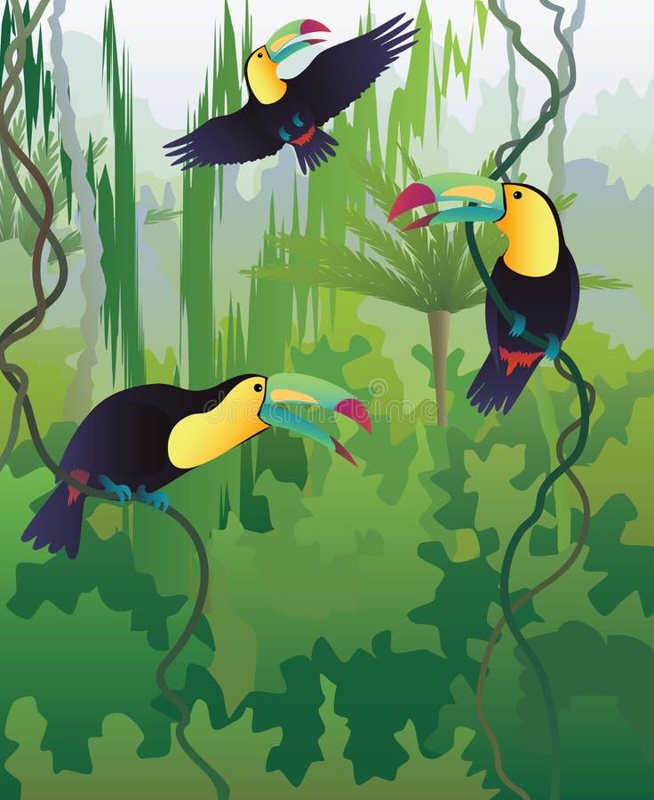 Toucans ilustração stock