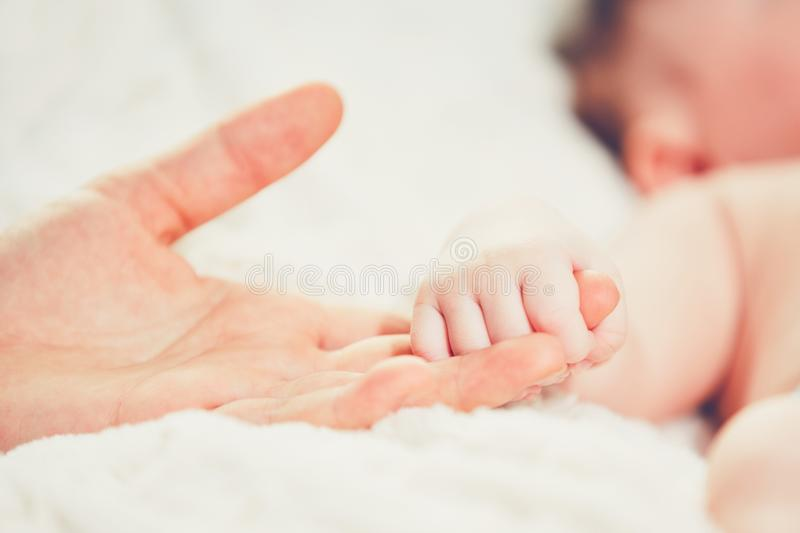 Touch of the motherhood royalty free stock image