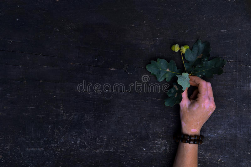 Touch the nature stock images