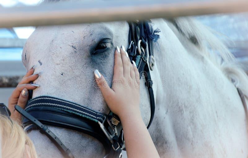 touching stock foto's