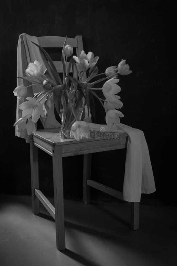 Toujours tulipes noires et blanches de la vie sur une chaise photographie stock libre de droits