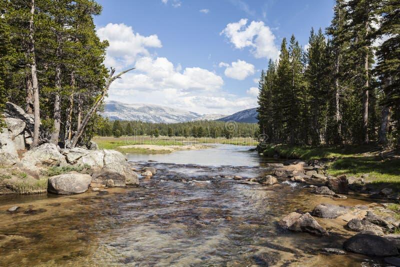 Toulumnerivier in Yosemite royalty-vrije stock foto's