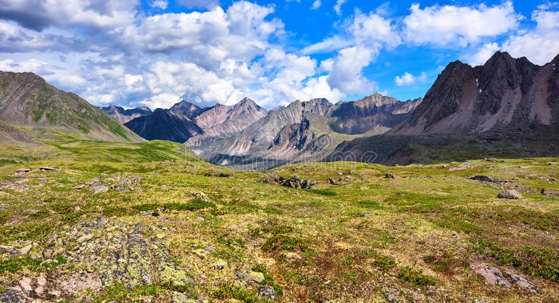 Toundra alpine peu profonde Nature primordiale photo stock