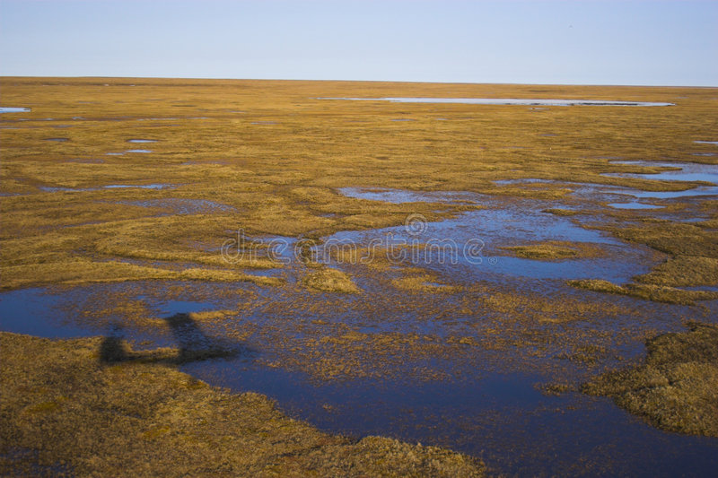 Toundra arctique d'air photos stock