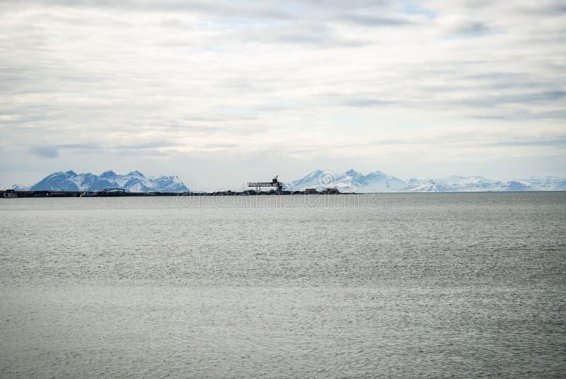 Toundra arctique dans la boue de début de l'été, le Svalbard images libres de droits