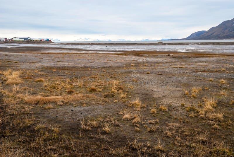 Toundra arctique dans la boue de début de l'été, le Svalbard photos libres de droits