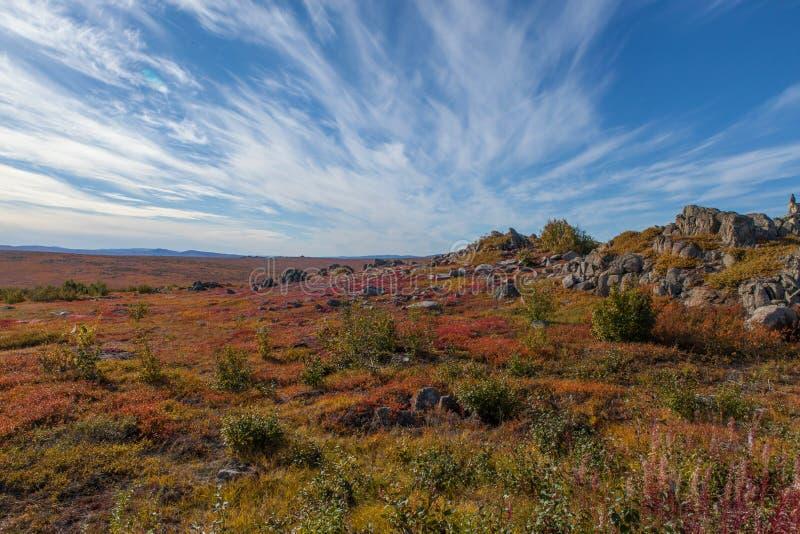 Toundra arctique du Yukon dans des couleurs de chute photo stock