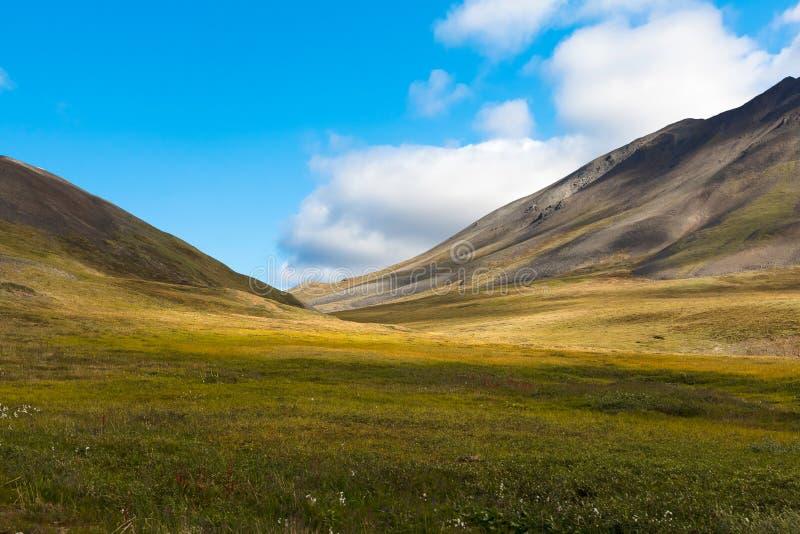 Toundra colorée de Chukotka d'automne, cercle arctique photos stock