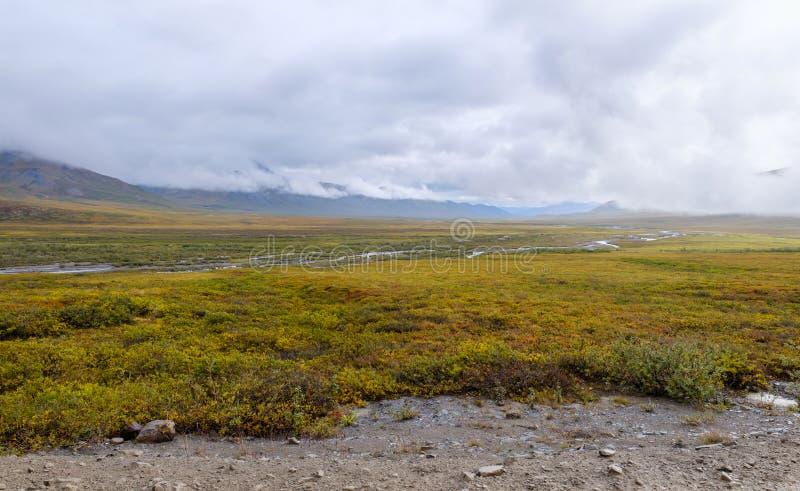 Toundra de l'Alaska au-delà du cercle arctique photo libre de droits