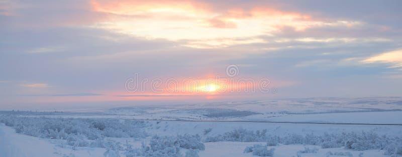 Toundra de l'hiver image libre de droits