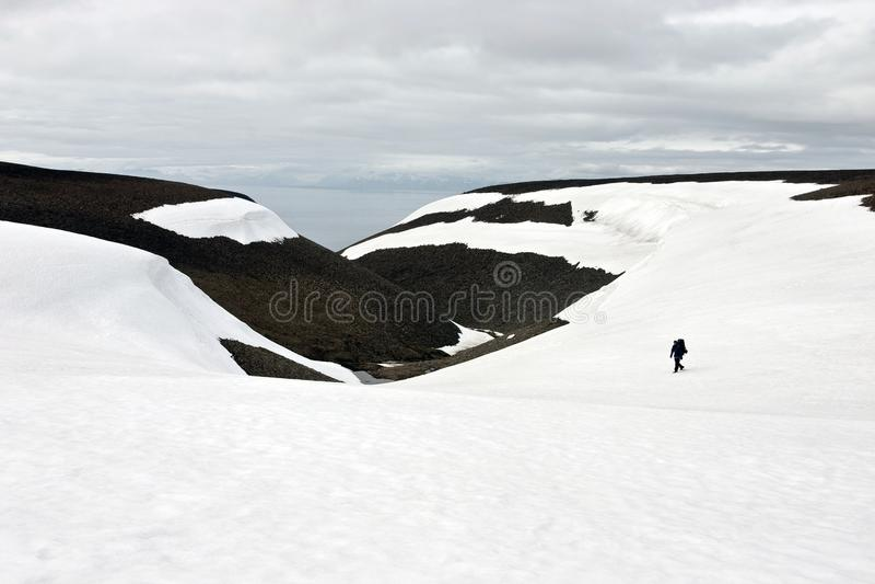 Toundra de marche de personne dans Svalbard image stock