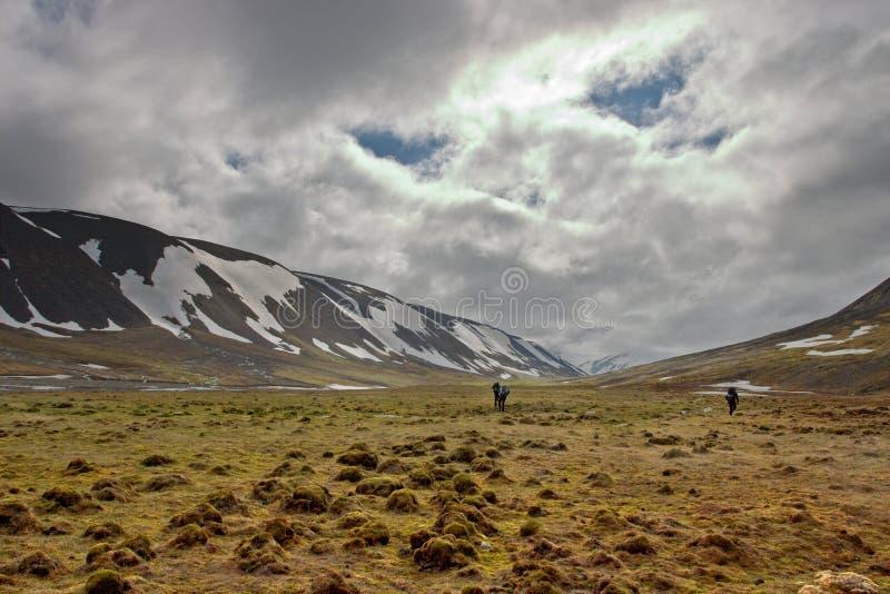 Toundra de marche de personnes dans Svalbard photo libre de droits