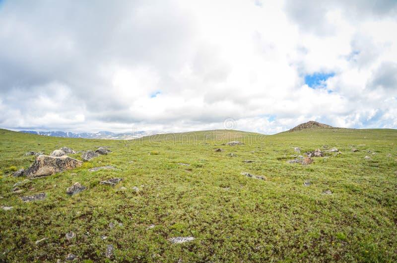 Toundra verte avec l'espace négatif le long de la route de Beartooth photos libres de droits