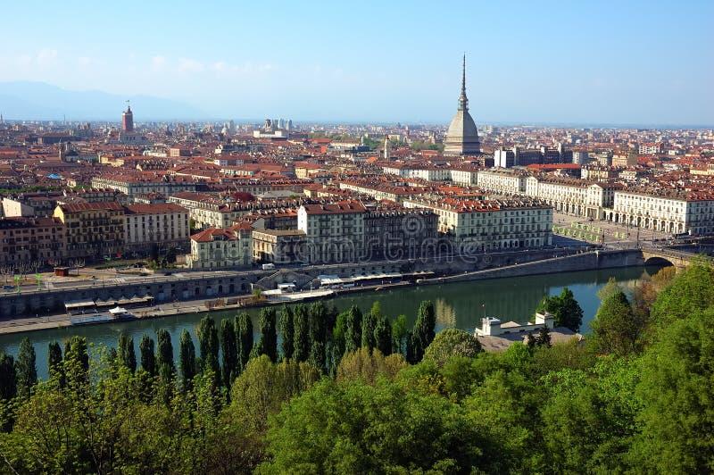 Toupeira de Turin imagem de stock