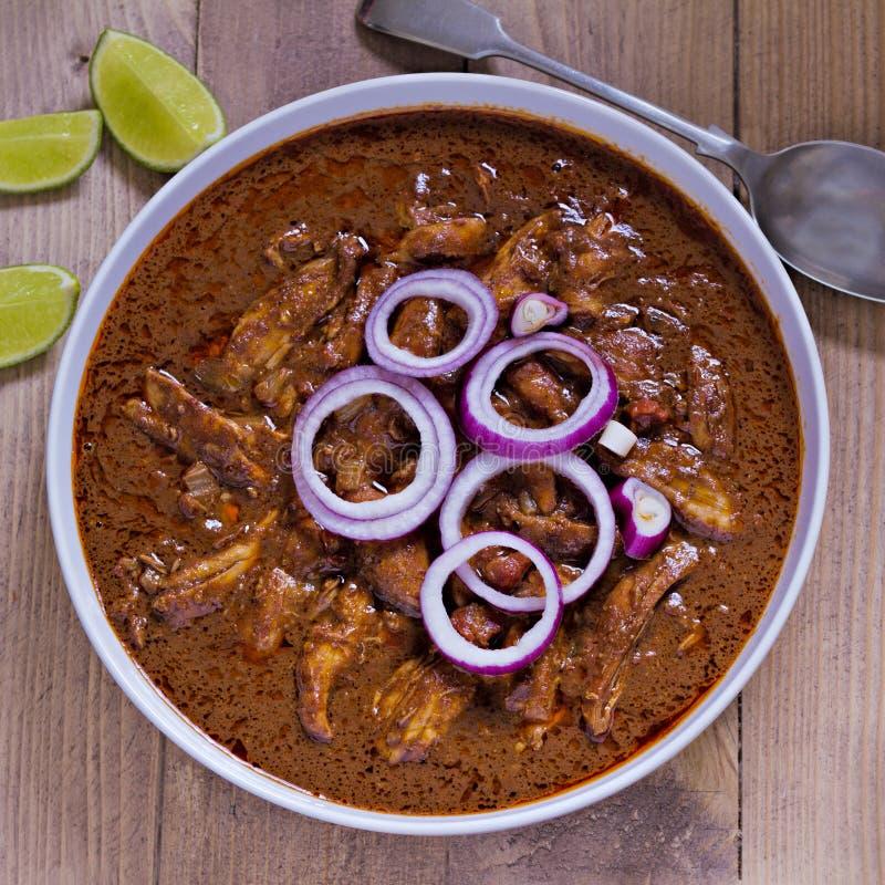Toupeira mexicana da galinha foto de stock royalty free