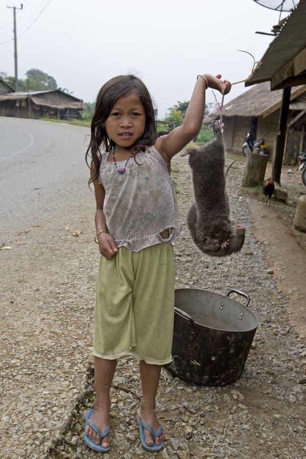 Toupeira para uma refeição, Laos do sell da criança foto de stock