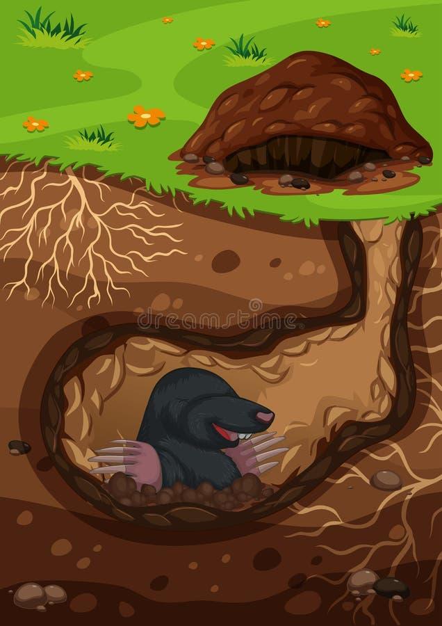 Toupeira subterrânea em um túnel ilustração do vetor