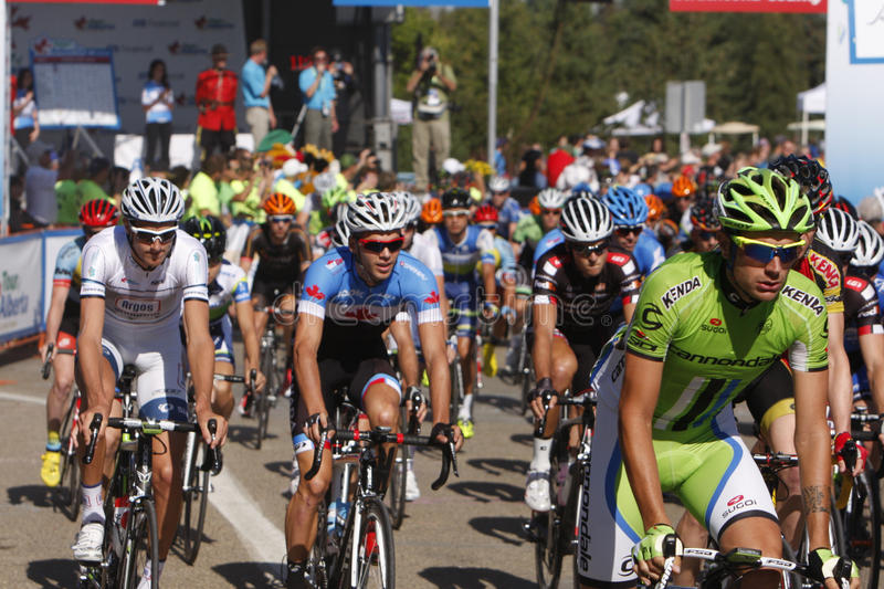 Download 2013 Tour of Alberta editorial stock image. Image of cyclists - 33402724