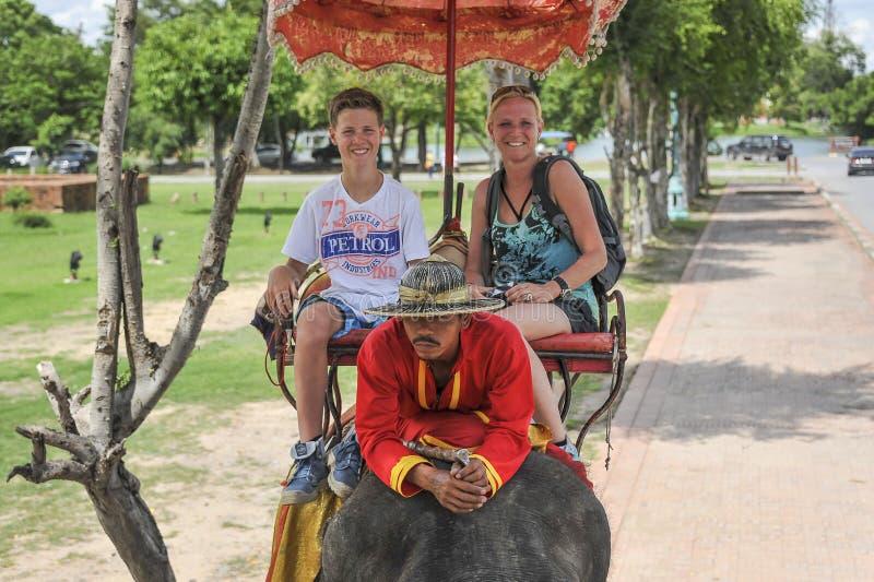 Tour d'éléphant photographie stock libre de droits