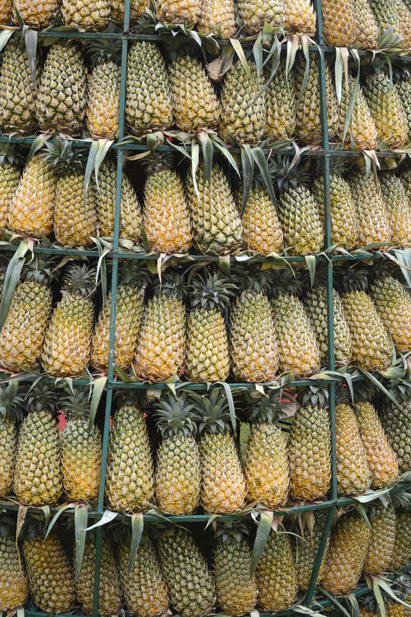 Tour d'ananas image stock