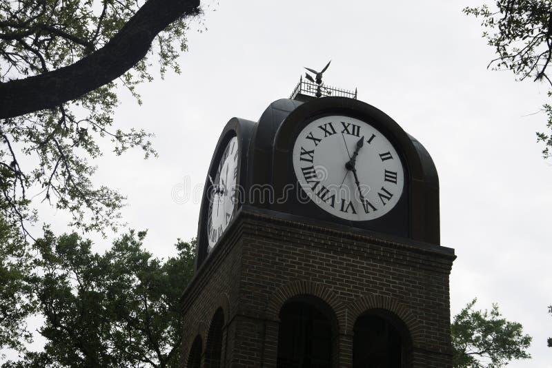 Tour d'horloge à Gainesville, la Floride image stock