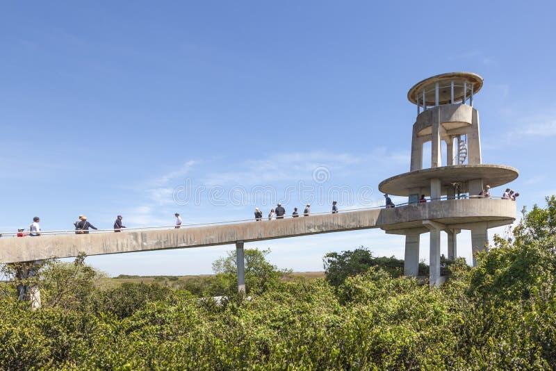Tour d'observation dans les marais, la Floride photographie stock