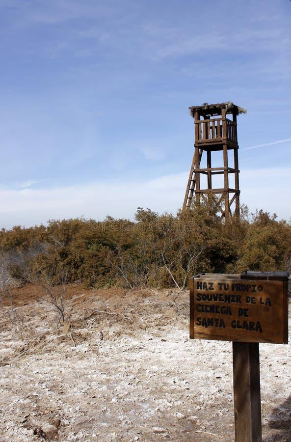 Tour d'observation d'oiseau chez le Ciénega De Santa Clara, Mexique photos libres de droits