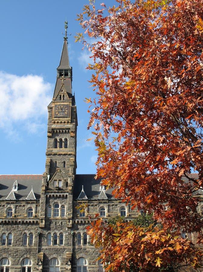 Tour d'université et feuillage d'automne photo stock