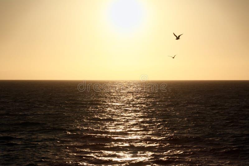 Tour de bateau de coucher du soleil de Catalina Island au continent images stock