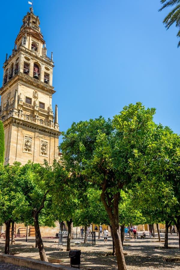 Tour de Bell et Patio de los Naranjos de la Mosquée-cathédrale, t photo libre de droits