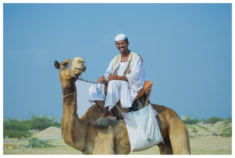 Tour de chameau photos libres de droits
