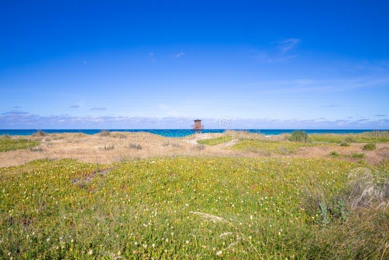 Tour de guet en plage derrière les usines luxuriantes à Cadix image stock