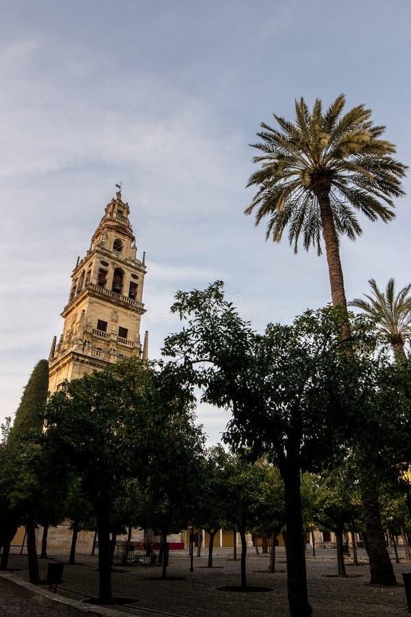 Tour de la mosquée - cathédrale de Cordoue photo stock