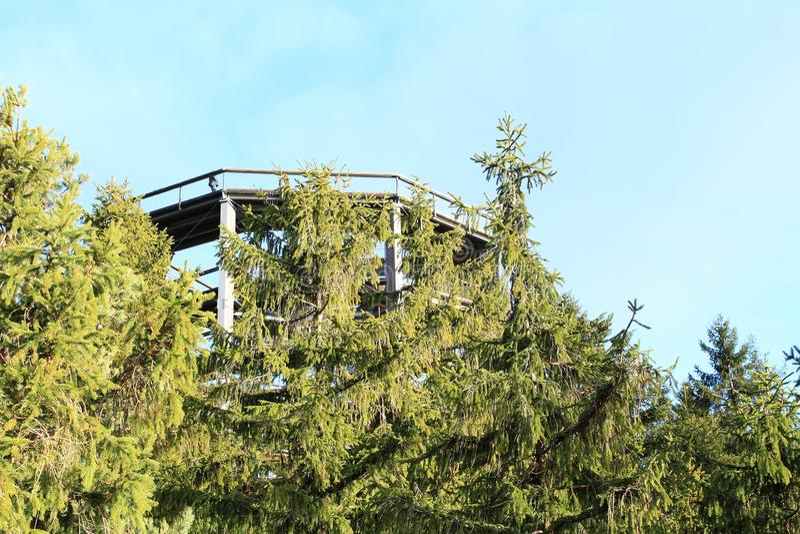 Tour de la surveillance de Lipno d'arbres de traînée photos stock