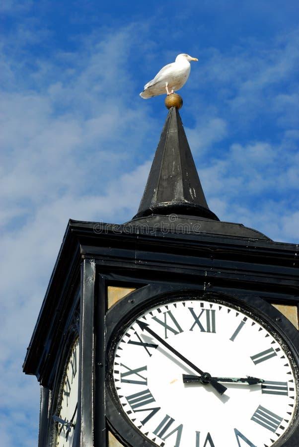 tour de pilier d'horloge de Brighton image libre de droits