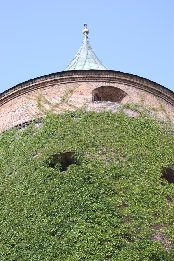 Tour de poudre à Riga photo libre de droits