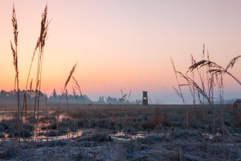 Tour de surveillance de chasseur sur le champ au lever de soleil photos stock