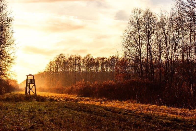 Tour de surveillance pour chasser à l'aube photos stock