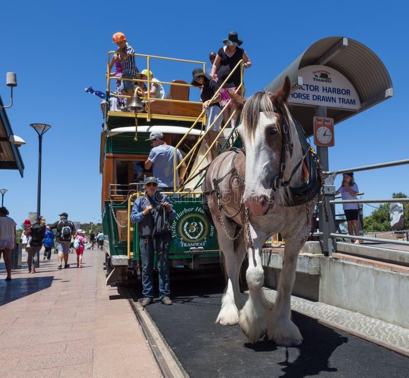 Tour de tram de cheval vers l'île de granit, Australie du sud image stock