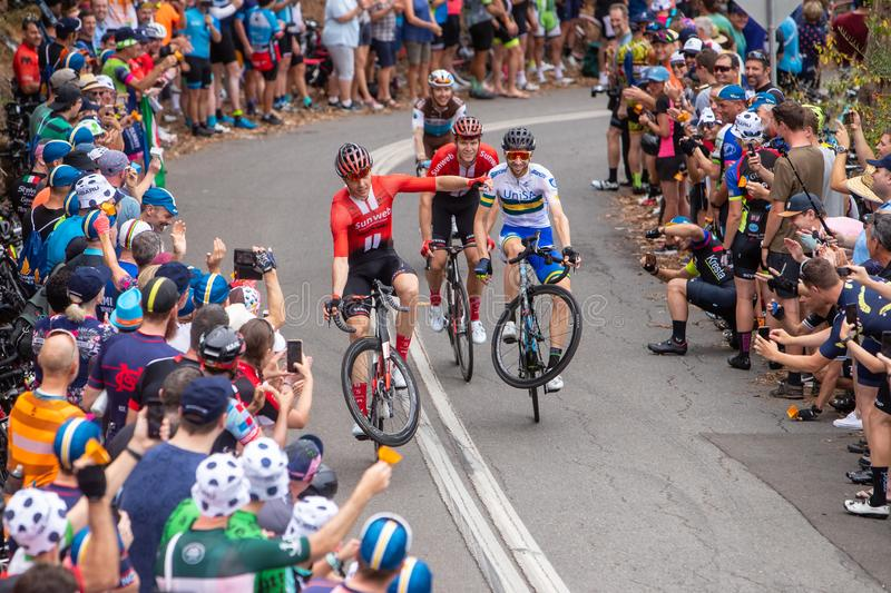 Tour Down Under 2019. ADELAIDE, AUSTRALIA - JANUARY 18 2019. Cees Bol of Netherlands and Team Sunweb and Neil Van der Ploeg of Victoria and UniSA-Australia doing royalty free stock photo