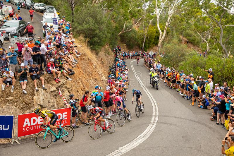 Tour Down Under 2019. ADELAIDE, AUSTRALIA - JANUARY 18 2019. First riders across the line at the King of the Mountain on Corkscrew road were George Bennett of stock images