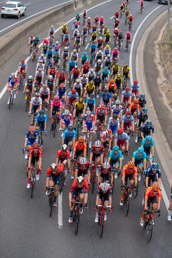 Tour Down Under 2019. ADELAIDE, AUSTRALIA - JANUARY 18 2019. The peleton on the Sount Eastern Freeeway near Crafers during Stage 4 from Unley to Campbelltown of royalty free stock images