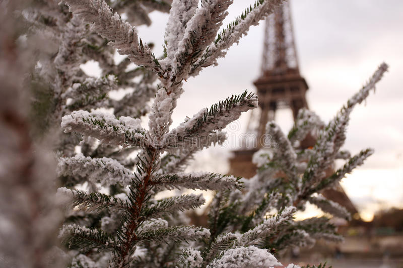 Download Tour Eiffel stock image. Image of tour, trees, attraction - 23701883